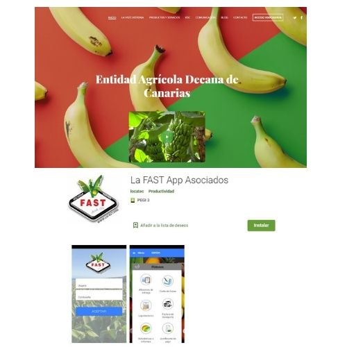 web_app_fast
