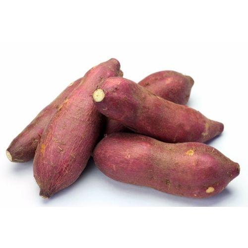 batata-colorada