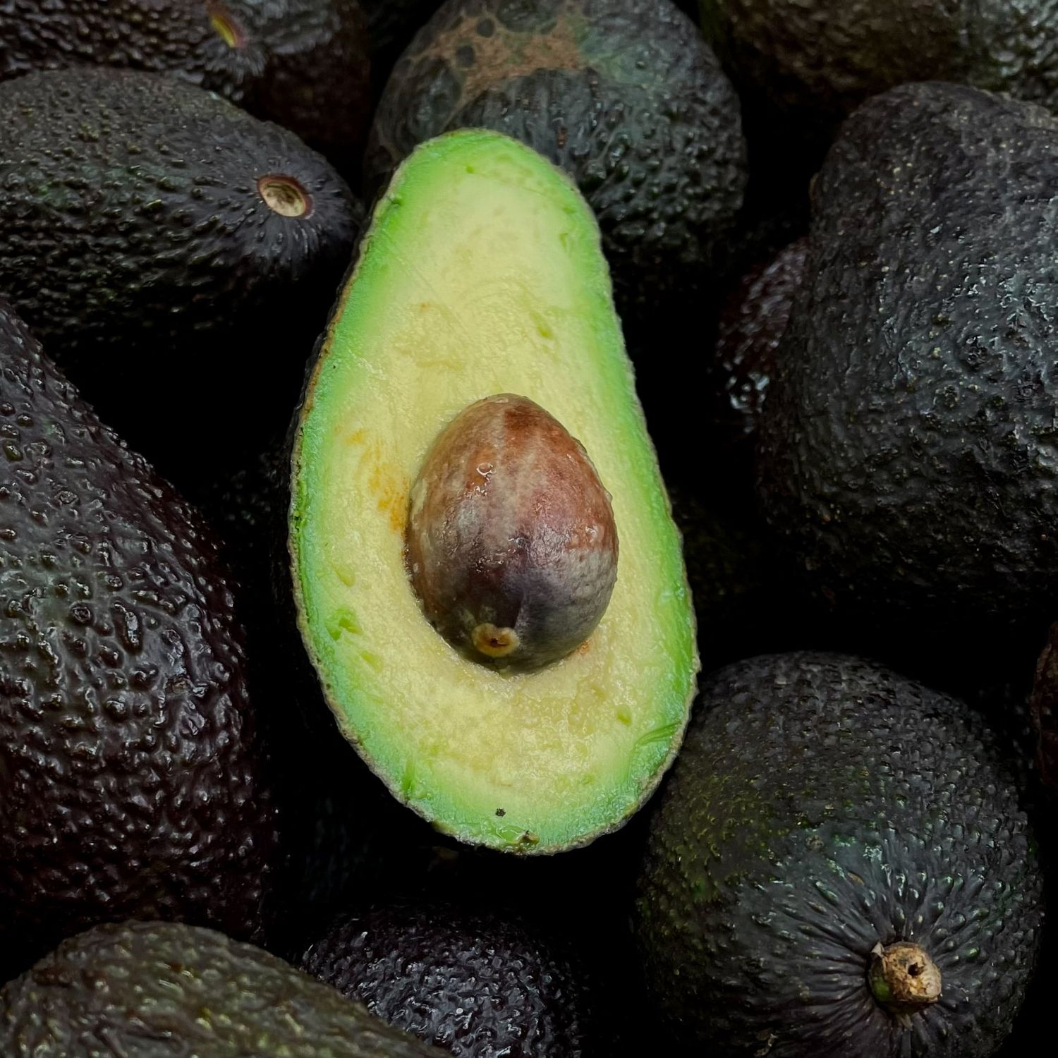 Aguacate-fast